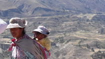 Colca Canyon 2-Day Tour from Puno to Arequipa, Puno, Cultural Tours