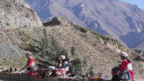 Colca Canyon bus tour in 2 Days, starting and ending in Arequipa, Arequipa, Multi-day Tours