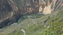 Full-Day Trip to Colca Canyon by Bus from Arequipa, Arequipa, Day Trips