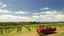Private Tour: Mornington Peninsula Behind-the-Scenes Gourmet Food and Wine Tasting Experience,...