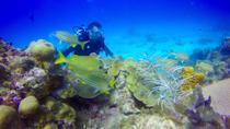Discover Scuba Diving & Snorkeling Combo, Punta Cana, Scuba Diving
