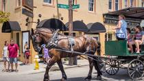 1-Hour Guided Carriage Tour of Charleston's Historic District, Charleston, Horse Carriage Rides