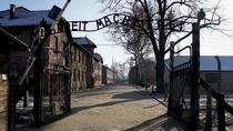 Auschwitz-Birkenau and Salt Mine Full day tour, Krakow, Full-day Tours