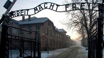Auschwitz-Birkenau Memorial and Musuem Guided tour from Krakow, Krakow, Museum Tickets & Passes