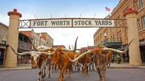 Stockyards Cattle Drive Tour en bicicleta eléctrica, Fort Worth, Bike & Mountain Bike Tours
