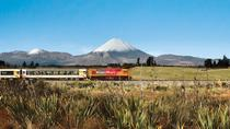 Full-Day Wellington to Auckland Scenic Train Ride, Wellington, Airport & Ground Transfers
