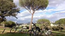 CASA DE CAMPO ELECTRIC BIKE TOUR, Madrid, Bike & Mountain Bike Tours