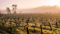 Barossa Valley con Private Tour a modo tuo!, Adelaide