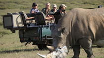 4-Day Private KOSHER Garden Route Tours from Cape Town with Game Drive, Cape Town, Cultural Tours