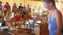 Skip-The-Line Admission Ticket: The Mayan Cacao Company in Cozumel, Cozumel, Skip-the-Line Tours