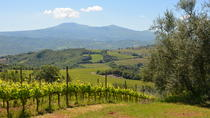Montalcino food & wine tour, Siena, Wine Tasting & Winery Tours
