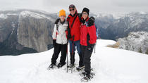 Guided Snowshoe Hike in Yosemite, Yosemite National Park, Hiking & Camping