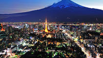 Private Arrival Transfer: Tokyo Airports to Tokyo and Urayasu