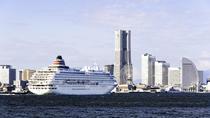 Private Yokohama Transfer: Yokohama Port to Tokyo Hotels, Yokohama, null