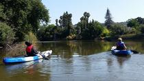 Napa River Eco Tour & Paddle Picnic, Napa & Sonoma, Kayaking & Canoeing