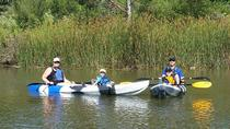 Napa River Kayak Tour of Oxbow Nature Preserve, Napa & Sonoma, 4WD, ATV & Off-Road Tours