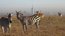 DAY TOUR TO GIRAFFE CENTER, ELEPHANT TRUST AND NAIROBI NATIONAL PARK, Nairobi, Safaris