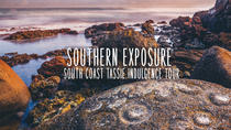 Southern Exposure: 3-Day Tassie South Coast from Hobart, Hobart, Multi-day Tours