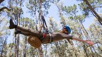 Busselton High Ropes and Zipline Adventure, Busselton, 4WD, ATV & Off-Road Tours