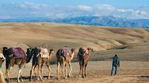Day Quad & Camel Riding With Lunch In The Desert Of Agafay, Marrakech, 4WD, ATV & Off-Road Tours