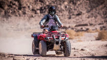 Half day quad biking and camel ride, Marrakech, Nature & Wildlife
