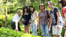 Live Guided Tour Ticket of Tropical Spice Garden, Pahang, Cultural Tours