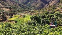 Coffee Plantation & Island Tour, Gran Canaria, Coffee & Tea Tours