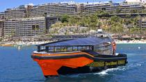 Gran Canaria Taxi Boat from Puerto Rico Harbor, Gran Canaria, Day Cruises
