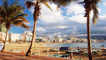 Guided Tour of Las Palmas including Botanic Garden and Volcano, Gran Canaria, Hop-on Hop-off Tours
