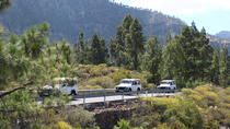 Small Group Jeep Safari from Gran Canaria, Gran Canaria, 4WD, ATV & Off-Road Tours