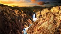Yellowstone National Park and Wildlife Small-Group Tour, Jackson Hole, Full-day Tours