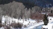 Yellowstone Winter Wildlife 4-Day Tour