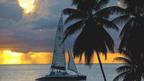 Snorkel Sunset Cruise In Barbados, Barbados, Snorkeling