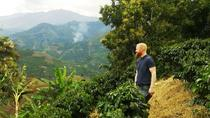 Coffee Plantation and Jardín City Day-Tour , Medellín, Day Trips