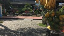 Combo Tour: Medellín City Tour and Antioquia's Food Markets Including Traditional Lunch,...
