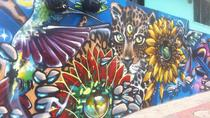 Full Day Private Medellín City, Street Art and Food Tour, Medellín, City Tours
