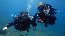 Discover Scuba Diving, Gran Canaria, Scuba Diving