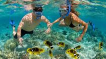 Bali Best Snorkeling at Blue Lagoon with Transport and Lunch, Ubud, 4WD, ATV & Off-Road Tours