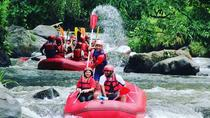 Bali Rafting Including Lunch and Transport, Ubud, 4WD, ATV & Off-Road Tours