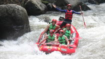 Full-Day Tour: White Water Rafting and Jungle Swing with Rice Terrace, Ubud, Full-day Tours