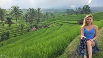 Private Full-Day Tour Jatiluwih Rice Terrace and Tanah Lot Temple, Ubud, Full-day Tours