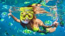 Private Tour: Blue Lagoon Snorkeling with Visit Tegenungn Waterfall in Ubud, Ubud, Attraction...