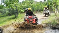 Quad Bike Adventure and Ubud Monkey Forest, Ubud, 4WD, ATV & Off-Road Tours