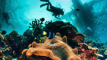 Try and Discover scuba diving, Cebu, Scuba Diving