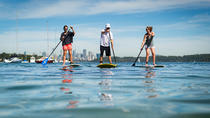 Stand Up Paddle on Sydney Harbour from Watsons Bay, Sydney, Stand Up Paddleboarding