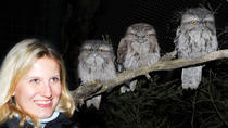 Moonlit Sanctuary Wildlife Conservation Park Evening Tour, Melbourne, Private Sightseeing Tours