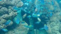 Sea Walking Under Water Walk Nusa Dua, Kuta, Other Water Sports