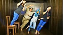 Penang 3D Trick Art Museum Admission, Penang, Museum Tickets & Passes