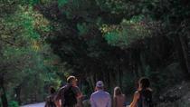 Marjan Hill Hike from Split