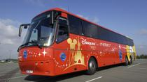 Shared Arrival Transfer: Paris Airports to Disneyland Paris Hotels, Marne-la-Vallée, Airport &...